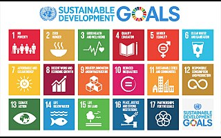 320px Sustainable Development Goals